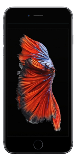 Apple iPhone 6s Mint+